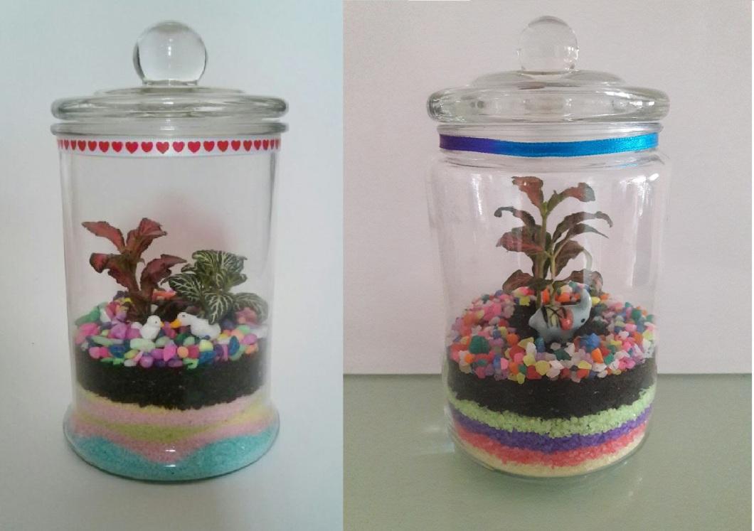 Colour Sand Terrarium